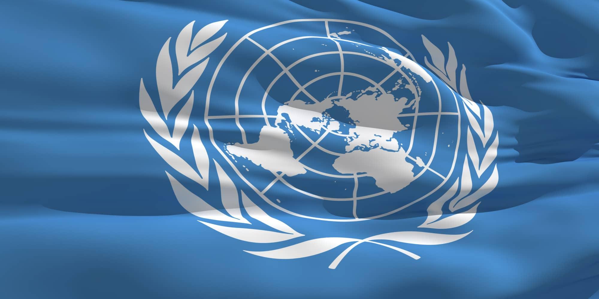 ΟΗΕ-σημαια